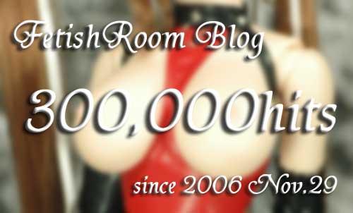 blog300000hits.jpg